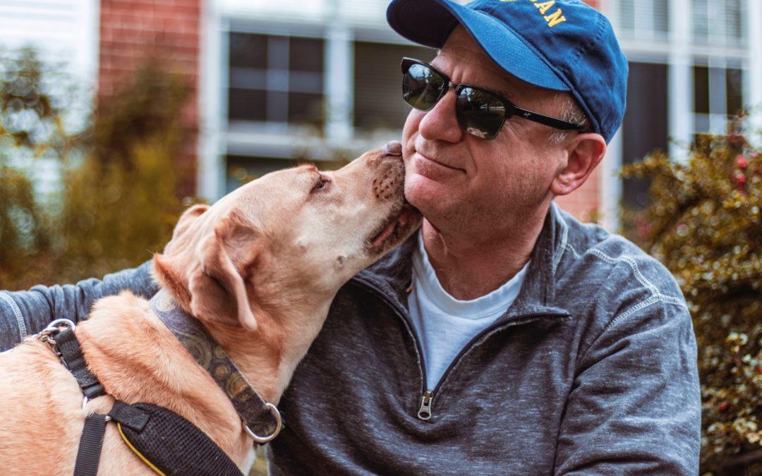 """Massachusetts """"Strict"""" Liability for Dog Bite Cases"""