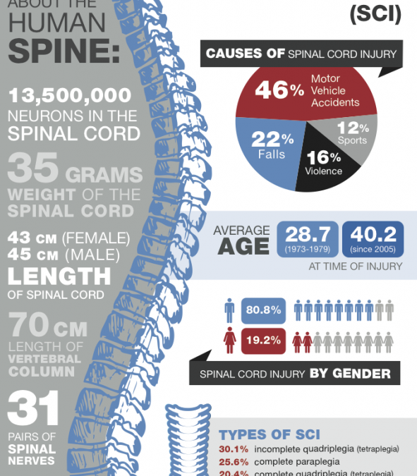 Spinal Cord Injury Awareness Month
